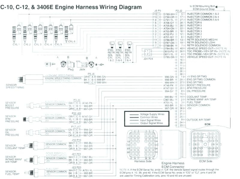 Cat 3176 Ecm Wiring Diagram Download Wiring Diagram Sample