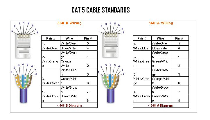 cat 5 wiring diagram pdf Collection-How Wire Cat Gorgeous Shape Best Picture Wiring Diagram For Cable Perfect Finishing Sample Decorating Wore 8-t