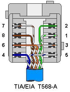 cat 5 wiring diagram wall jack Collection-Terminating and Wiring Wall Plates cat5 coaxial phone s video 14-m