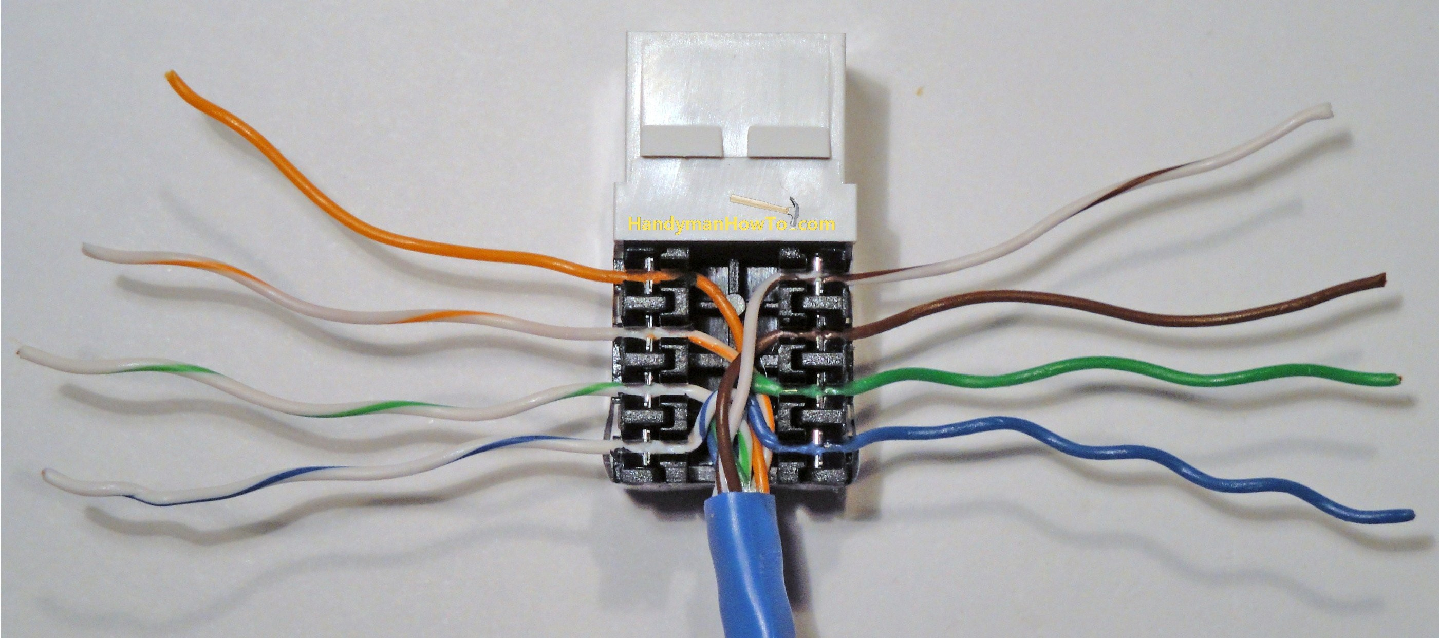 ce tech cat5e jack wiring diagram Collection-Cat5 Wall Plate Wiring Diagram Beautiful Network Wiring In Wall Plex Wiring • Kpopindo 7-o