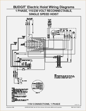 coffing hoist wiring diagram Download-Budgit Electric Chain Hoist Wiring Diagram Fresh Unique Coffing Hoist Wiring Diagram Image Collection Electrical 8-o
