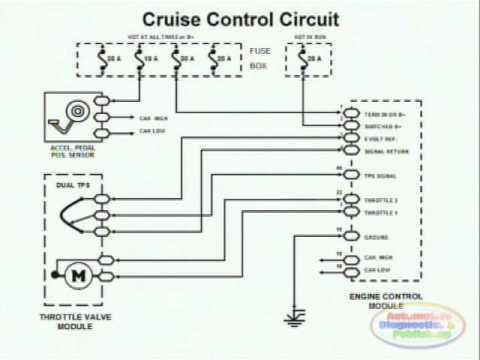 ew 36 wiring diagram Download-Cruise Control & Wiring Diagram 11-d
