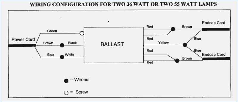 fulham wh5 120 l wiring diagram Download-Workhorse Ballast Wiring Diagram – The Wiring Diagram – readingrat 9-m