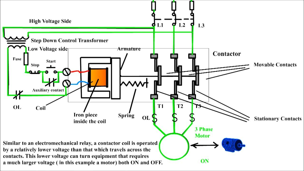 Iec Motor Wiring Diagram - Data Wiring Diagrams •