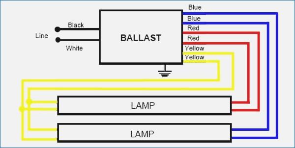 t12 ballast wiring diagram Download-Proline T12 Ballast Wiring Diagram e Bulb – beyondbrewing 10-e